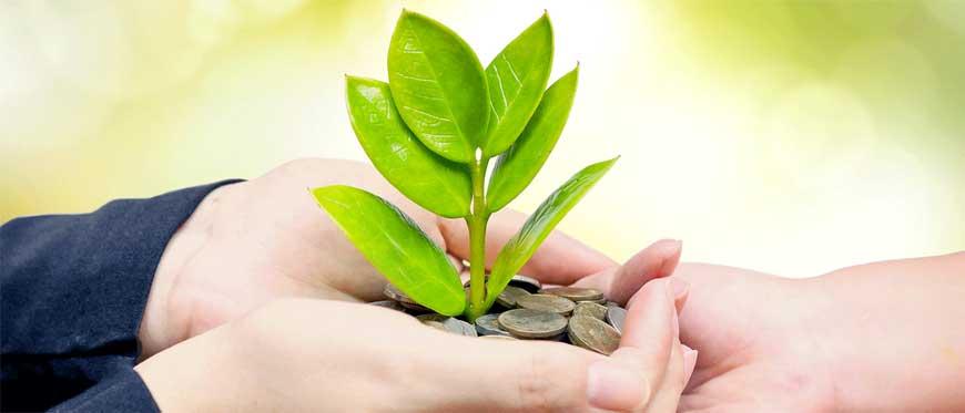 CREDITFIN di Michele Martinelli - servizi di Consulenza Finanziaria: mutuo agrario